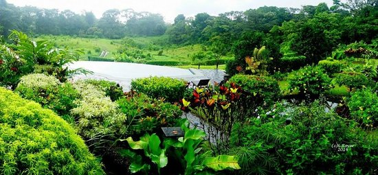 Arenal Lodge : Beautiful landscaping