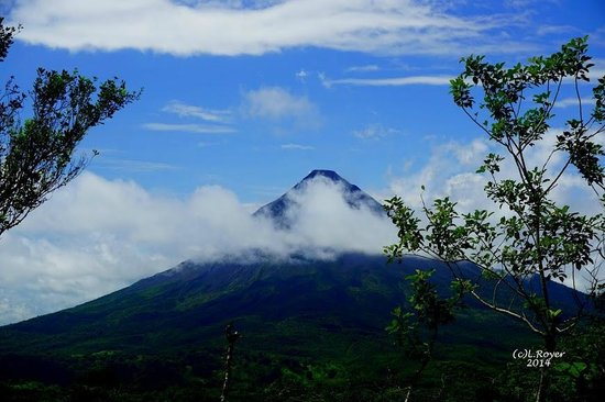 Arenal Lodge : Excellent view