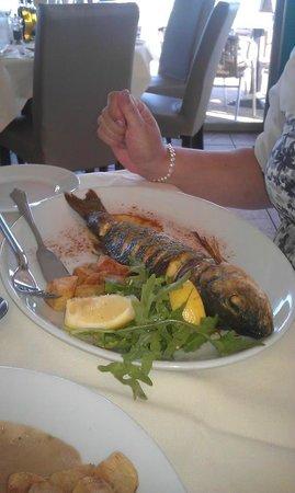 Vesuvio : sea bass