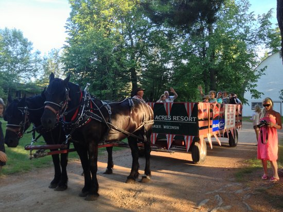 Holiday Acres Resort : Tuesday night summer hayride