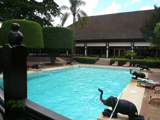 Safari Park Hotel: POOL