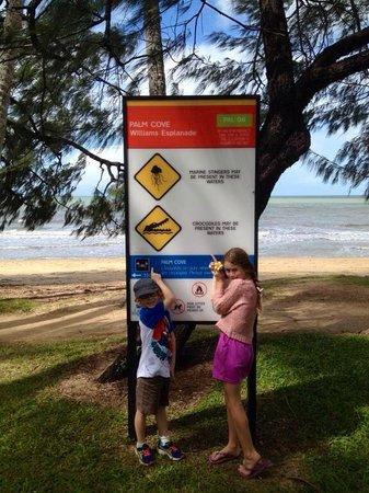 Palm Cove Beach: Beware stingers and crocodiles!