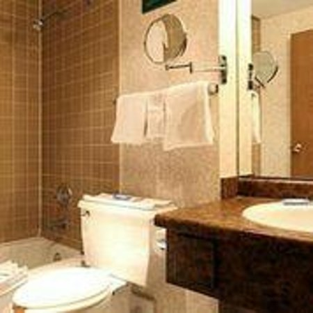 Americas Best Value Inn & Suites - Bush Int'l Airport Wes: Bathroom