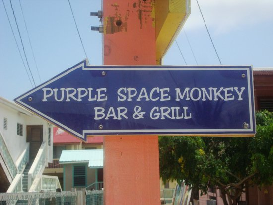 The Purple Space Monkey Bar & Grill : This way to the Purple Space Monkey!