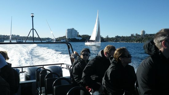 Manly Ocean Adventures: the run out of Manly - yachts & ferries