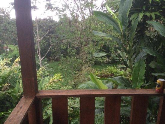 Paradise Adventures Costa Rica (PACR): Cabinas Catteras