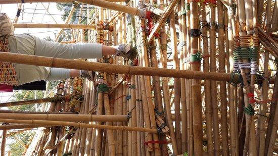 Museo de Israel: big bambu