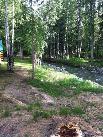 Log Cabin Wilderness Lodge: Another stream view