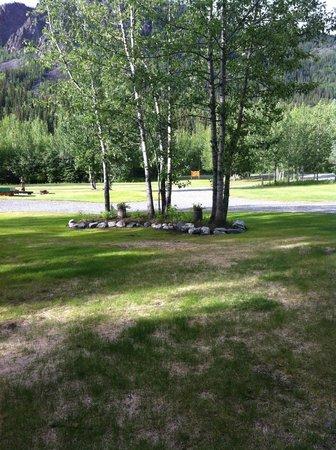Log Cabin Wilderness Lodge: Grounds