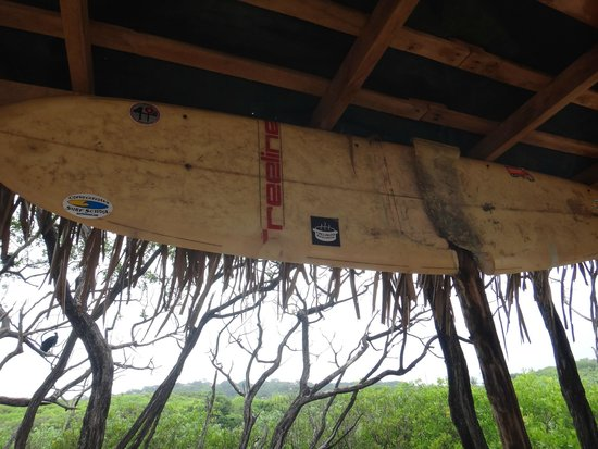 Living Hotel: One of the huts on Playa Guiones