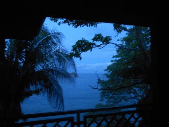 Arenas del Mar Beachfront & Rainforest Resort : view from my deck