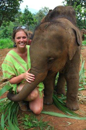 Patara Elephant Farm - Private Tours : My Elephant's 1 year old!