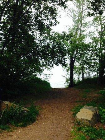 Island View Resort : Path to beach