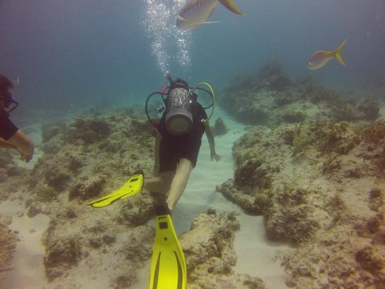 Happy Dive Center: Diving Cuevitias
