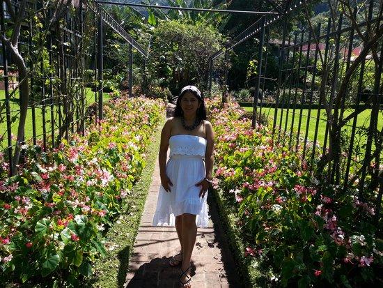 Hotel Atitlan : paseando en los jardines