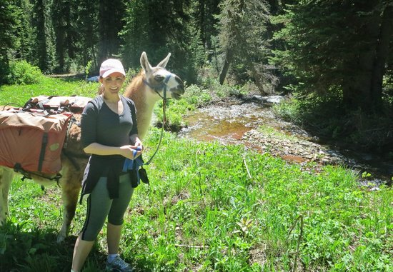 Jackson Hole Llamas: Eve and Sarah