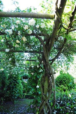 写真Jardins de la Mansonière枚