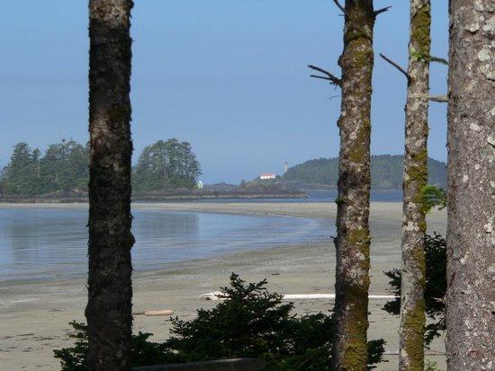 Chesterman Beach: Morning