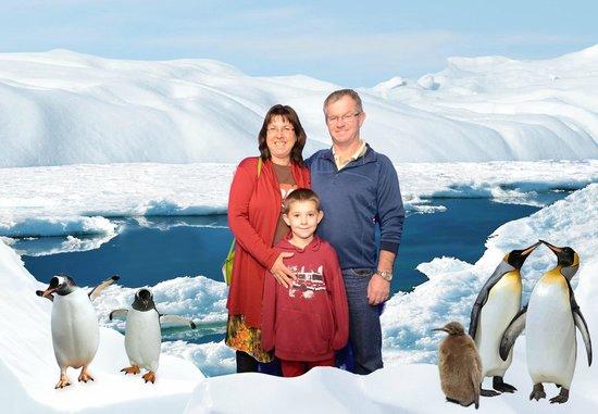 Kelly Tarlton's Sea Life Aquarium : On the ice