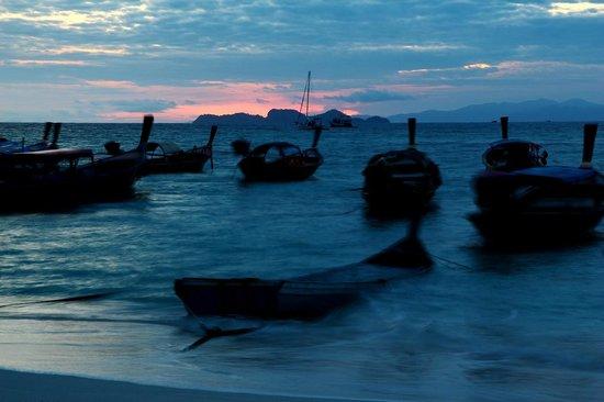 Idyllic Concept Resort: Long Tail Boats waiting Sunrise