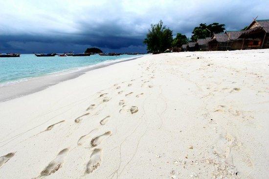 Idyllic Concept Resort: A Walk by the Beach