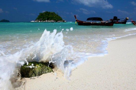 Idyllic Concept Resort: Splash