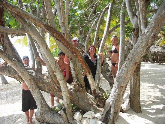 Isla Saona: Our family picture