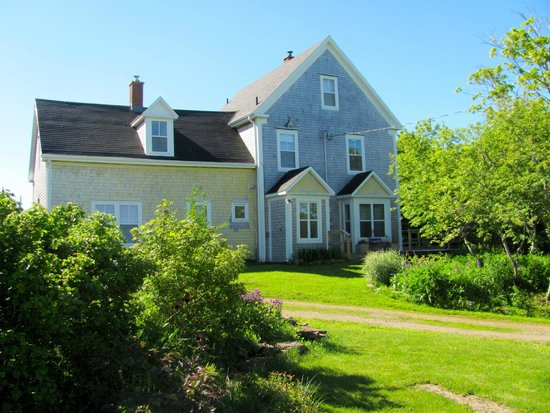 Laurel's Bed and Breakfast: B&B and grounds