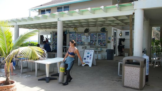 Cobalt Coast Grand Cayman Resort : dive shop