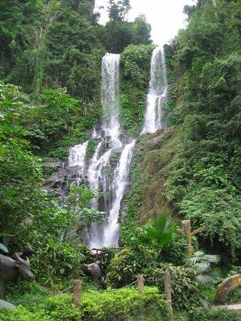 Tamaraw Waterfalls : The Tamaraw Falls and Tamaraw water buffalo statues