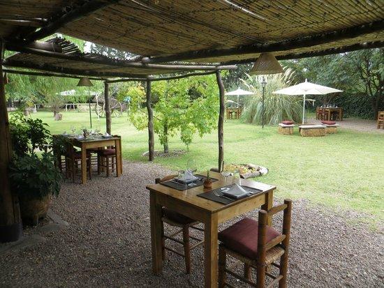 Pie de Cuba: Nuestros jardines...