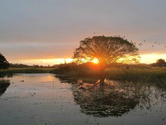 Araras Pantanal Ecolodge: Sunset