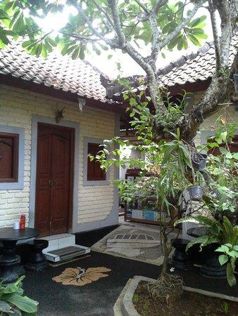 Dana Guesthouse: open area