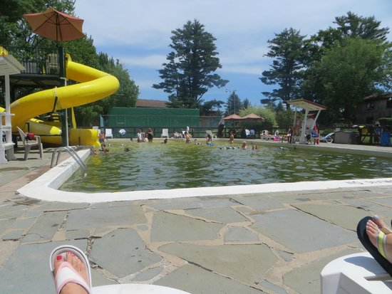 Pinegrove Family Dude Ranch : pool