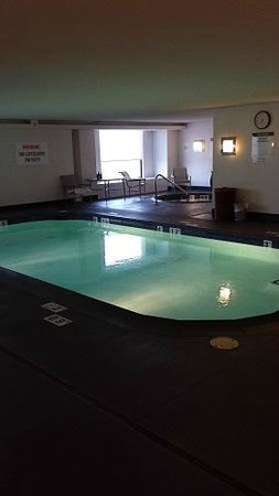 The Westin Detroit Metropolitan Airport: Indoor pool is small, but good for a quick dip