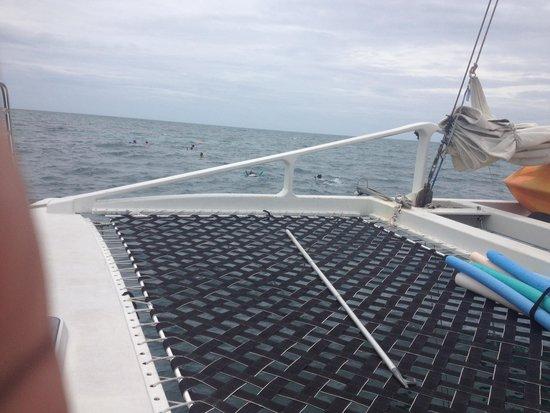 Blu Q Catamaran : View from Blu Q