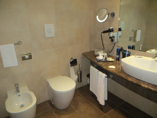 Sheraton Milan Malpensa Airport Hotel & Conference Centre: our bathroom