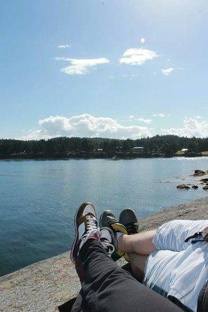 Mayne Island Resort: The resort from across the bay