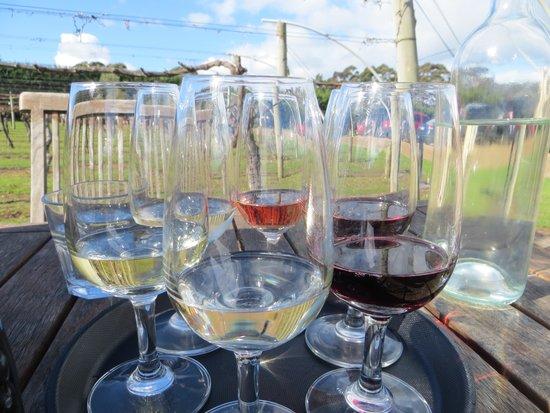 جزيرة واهيكي, نيوزيلندا: Trying out some wine