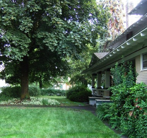 Marianna Stoltz House Bed and Breakfast: Lovely side yard with large trees