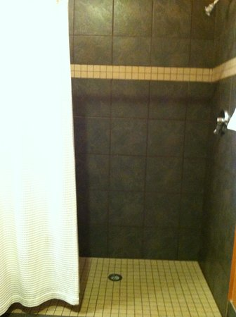"Pacific Blue Inn: Large tiled shower ""very clean"""