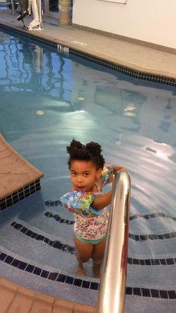 SpringHill Suites Harrisburg Hershey: Pool
