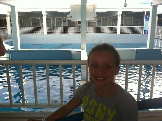 Clearwater Marine Aquarium : My daughter happy as can be watching Hope and Winter play in the tanks
