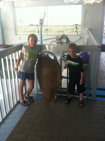 Clearwater Marine Aquarium : My daughter and nephew standing next to a turtle shell at the Turtle Cove