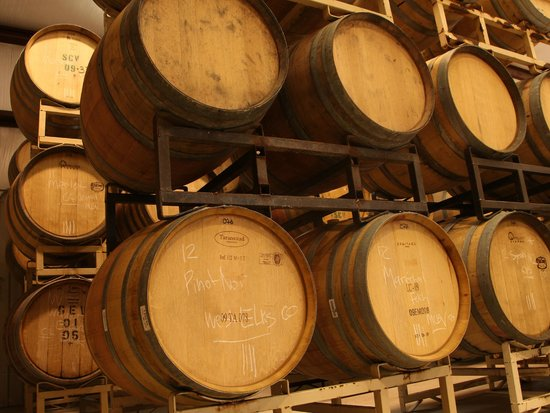 Maison la Belle Vie Winery: Pinot Noir and other great wines aging