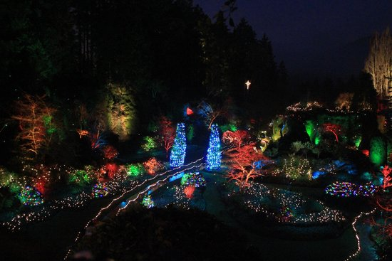 Butchart Gardens: Winter Light Display