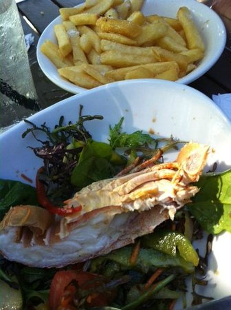 Fitzroy Island Resort: Bug salad (half eaten - sorry ) foxy's