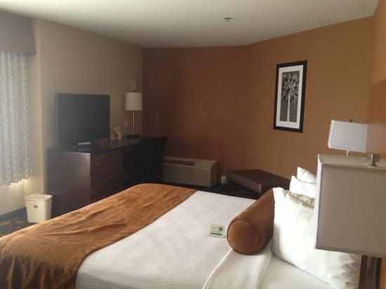 BEST WESTERN PLUS Suites Hotel Coronado Island: king room