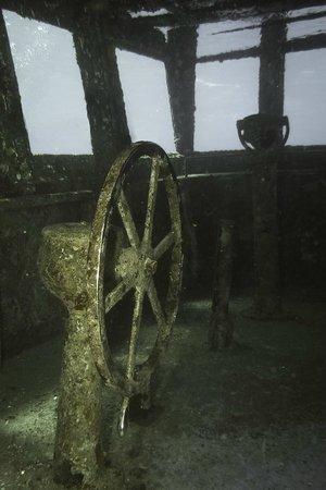Kittiwake Shipwreck & Artificial Reef: bridge