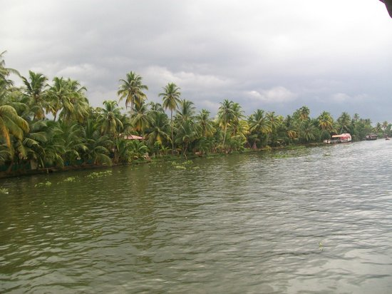 Kerala Backwaters: View of the backwaters from the Houseboat